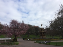 Part of Princes Street Gardens