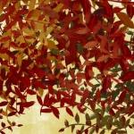 autumnal foliage.