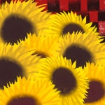 sunflowers with a red check background.